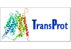 New insights into structure, function and regulation of transport proteins